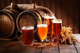 Beginnerscursus Bier...
